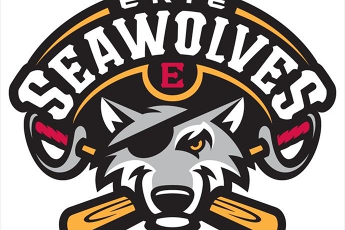 Erie SeaWolves Current Logo_4033248743838993106