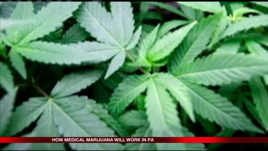 How medical marijuana will work in Pa_59633233-159532
