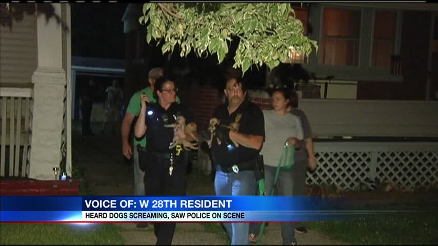 Dogs injured after fight in Erie_72809444-159532