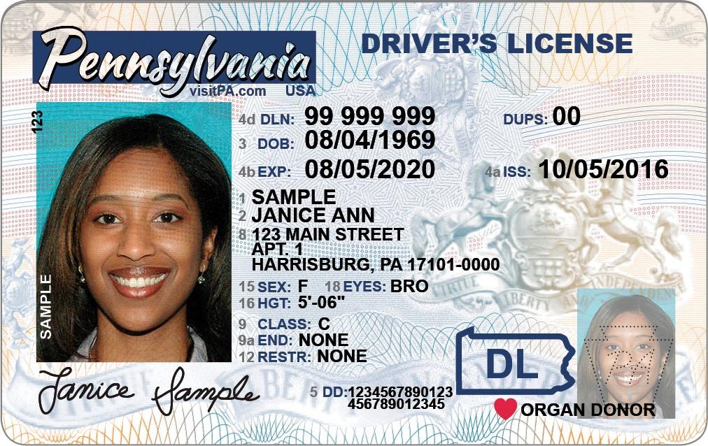 NEW Driver's Licenses_1497991396873.jpg