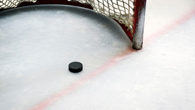 hockey puck in goal25405121-159532