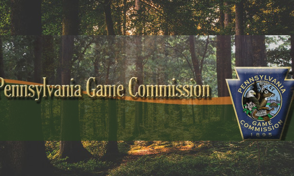 PA Game Commission_1548181289249.png.jpg