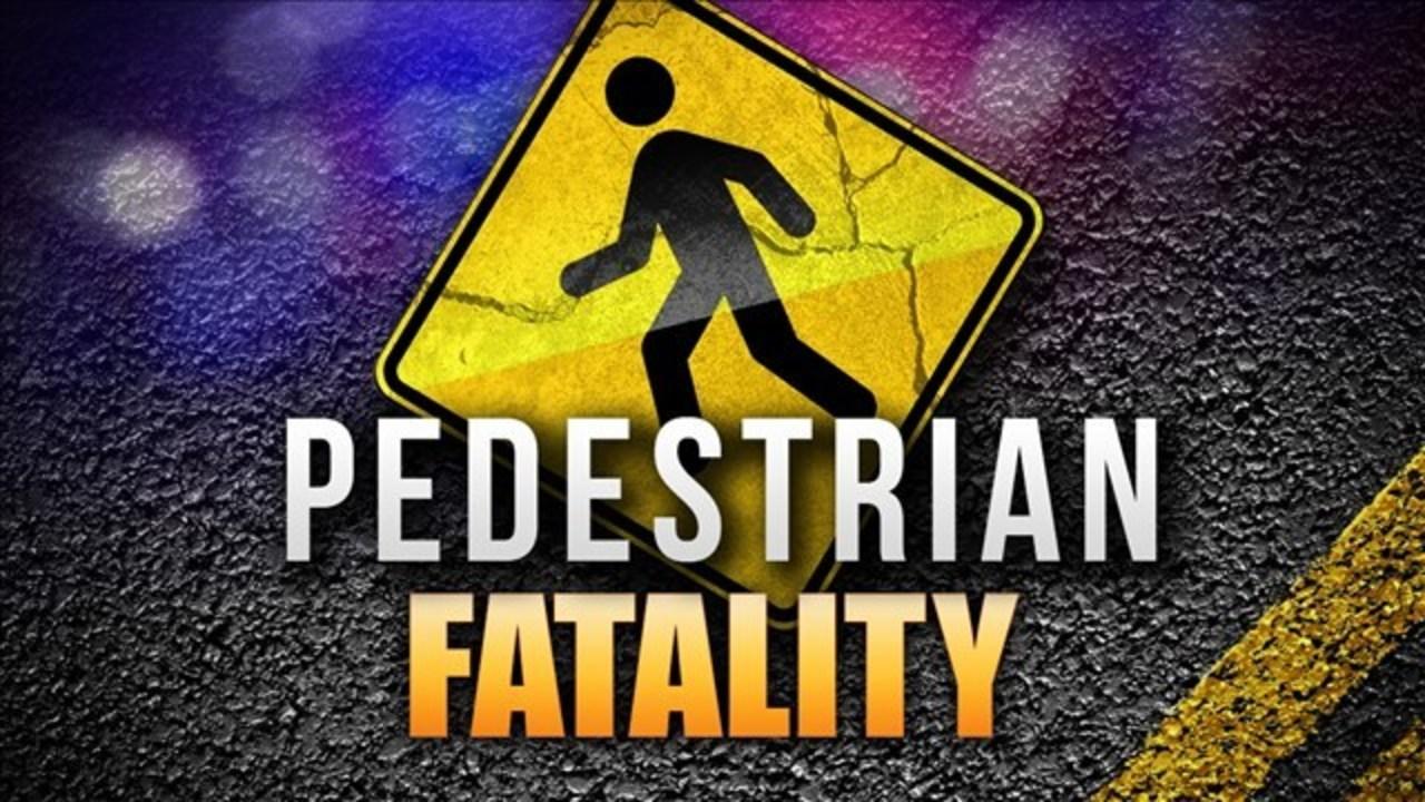 pedestrian fatality_1548794996508.jpg.jpg