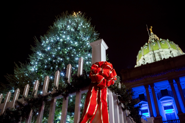 Governor Wolf kicks off holidays with Capitol Christmas tree